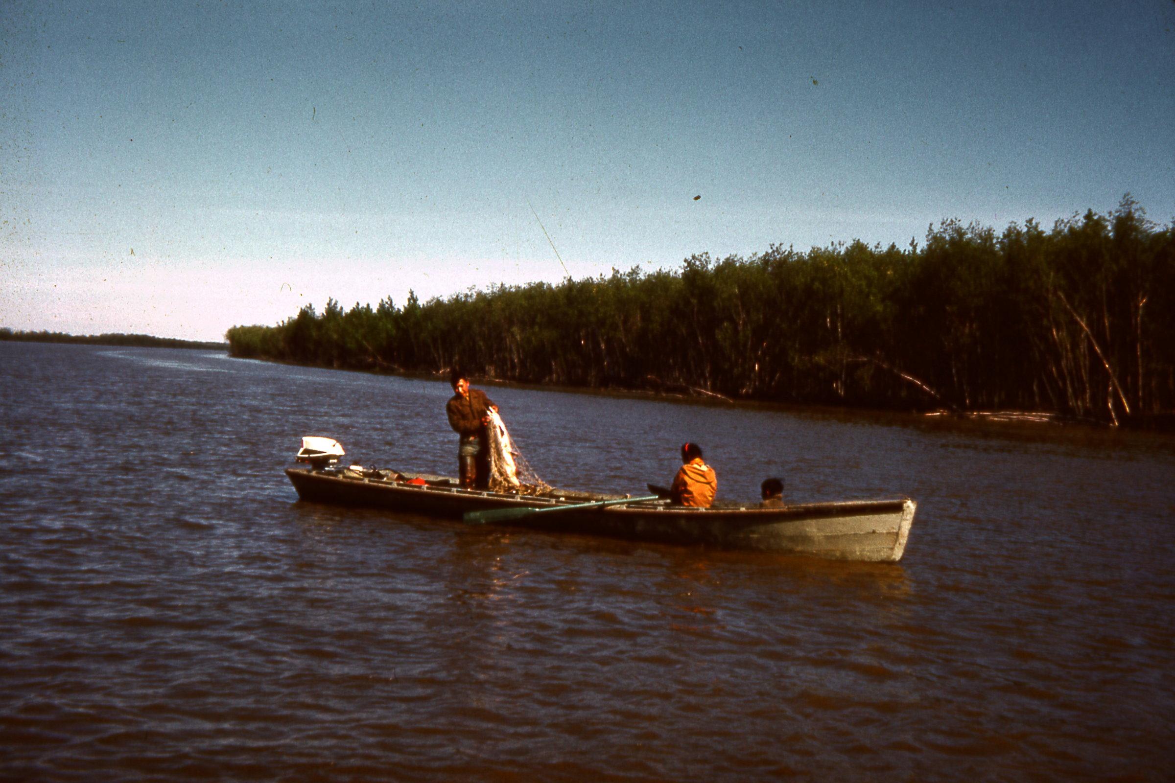 1964 Drifting for salmon